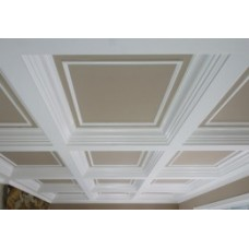 Paneled Ceilings
